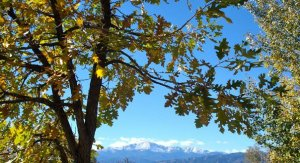 Pikes Peak in Fall